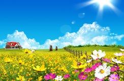 дом поля зеленая славная Стоковое Изображение RF