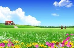 дом поля зеленая славная Стоковые Изображения