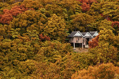 Дом праздника деревянный на каникулах изменения сезона леса Стоковые Изображения RF