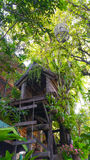 Дом птицы и дом на дереве Стоковые Фотографии RF