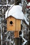 Дом птицы на дереве Стоковое Изображение