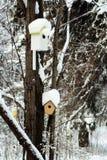 Дом птицы на дереве Стоковые Изображения