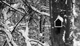 Дом птицы на дереве Стоковое Фото