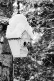 Дом птицы на дереве Стоковые Изображения RF