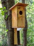 Дом птицы на дереве Стоковая Фотография RF