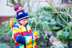 Дом птицы смертной казни через повешение мальчика маленького ребенка на дереве для подавать в зиме Стоковая Фотография
