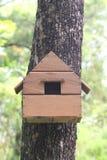 Дом реплики животного белки на дереве в саде Стоковое Изображение RF