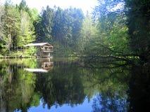 Дом рыбной ловли леса на озере Стоковые Изображения RF
