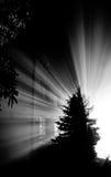 Дом светового луча Стоковые Изображения RF