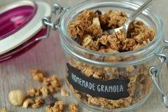 Дом сделал granola Стоковая Фотография