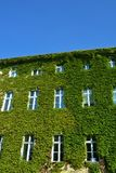 Дом с зелеными стенами Стоковая Фотография RF