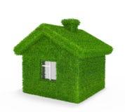 дом травы Стоковые Изображения