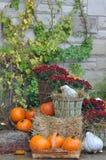 Дом украшенный с тыквами и листьями падения на благодарение d стоковые фотографии rf