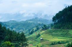 Дом ходулей на террасном поле риса с горами и облаками Стоковое фото RF