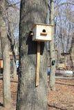 Дом для птиц стоковые фотографии rf