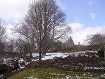 Дом Biltmore на заднем плане Стоковая Фотография
