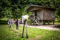 Дом primiteve в Папуаой-Нов Гвинее стоковая фотография rf