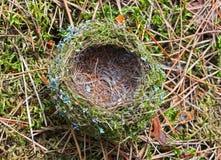 дом s птицы Стоковое Изображение