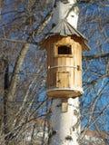 дом s птицы Стоковые Фотографии RF