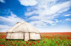 Дом Urta кочевнический на поле цветков мака стоковое изображение rf