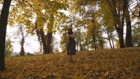 Дополнительное рискованное предприятие Женщина идет в парк на заходе солнца Девушка в длинной юбке среди деревьев 4K видеоматериал