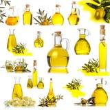 Дополнительный виргинский изолированный комплект собрания оливкового масла Стоковая Фотография