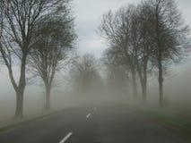 Дорога асфальта в тумане стоковое фото rf