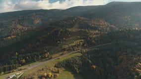 Дорога асфальта серого цвета окруженная смешанными лесами освещенными солнцем сток-видео
