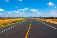 Дорога асфальта в африканской саванне Стоковые Изображения
