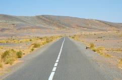 Дорога асфальта в Марокко стоковая фотография rf