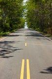 Дорога асфальта и зеленые деревья. Стоковая Фотография