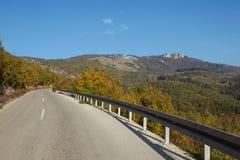 Дорога асфальта через зеленое поле и очищает голубое небо в дне осени Стоковые Фотографии RF