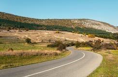 Дорога асфальта через зеленое поле и очищает голубое небо в дне осени Стоковые Изображения RF