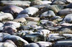 Дорога больших камней Стоковое фото RF