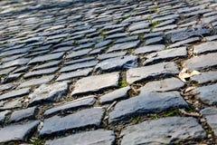 Дорога булыжника Flandres - деталь стоковые изображения