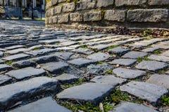 Дорога булыжника Flandres - деталь стоковое фото