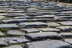 Дорога булыжника Flandres - деталь стоковая фотография rf
