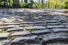 Дорога булыжника Flandres - деталь стоковое изображение rf