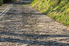 Дорога булыжника Flandres стоковая фотография rf