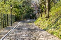 Дорога булыжника Flandres стоковые фото