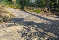 Дорога булыжника Flandres стоковое фото