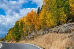 Дорога вдоль западных цветов осени стоковые фото
