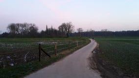 Дорога возглавляя домой Стоковое фото RF