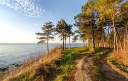 Дорога вокруг моря стоковое изображение rf