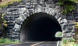 Дорога входя в каменный тоннель с переростом Стоковое фото RF
