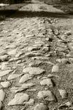 Дорога вымощая камня Стоковые Фотографии RF