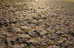 Дорога вымощенная с крупным планом setts Стоковая Фотография RF