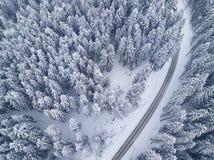 Дорога в взгляде глаза ` s птицы леса зимы Стоковое Изображение RF