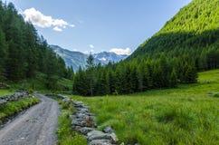 Дорога в высокогорном ландшафте лужка высоких гор на ясном лете, солнечном дне. Стоковое фото RF