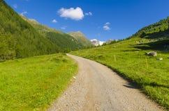 Дорога в высокогорном ландшафте лужка высоких гор на ясном лете, солнечном дне. Стоковые Фотографии RF